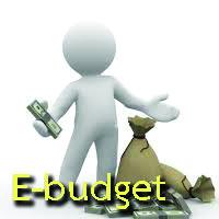 e-budget