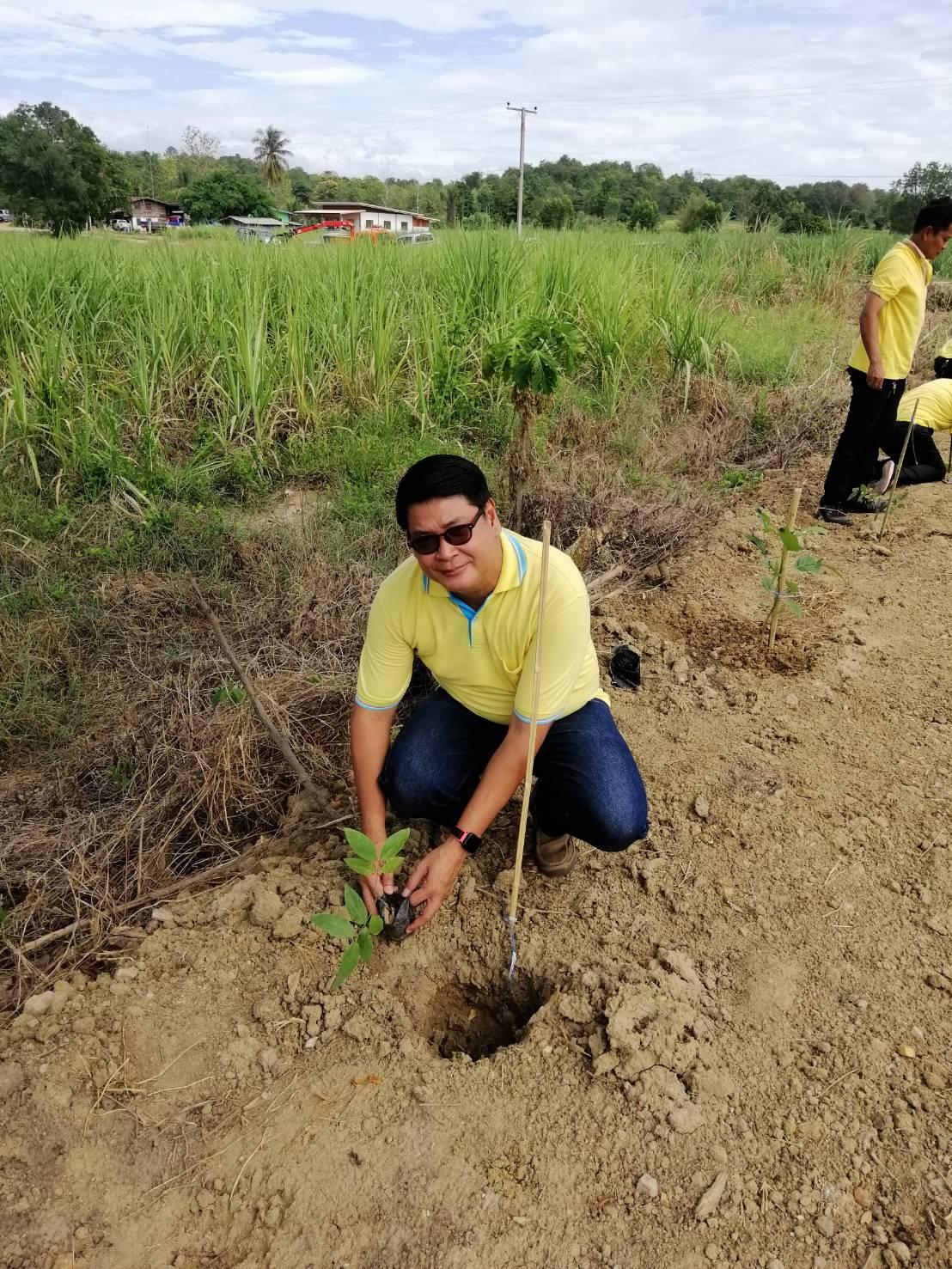 โครงการท้องถิ่นไทยรวมใจภักดิ์ รักพื้นที่สีเขียวและโครงการ ส่งเสริมการปลูกหญ้าแฝก